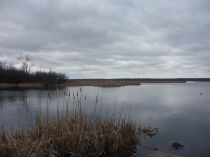 The Back Pond at Mac Johnson Conservation Area