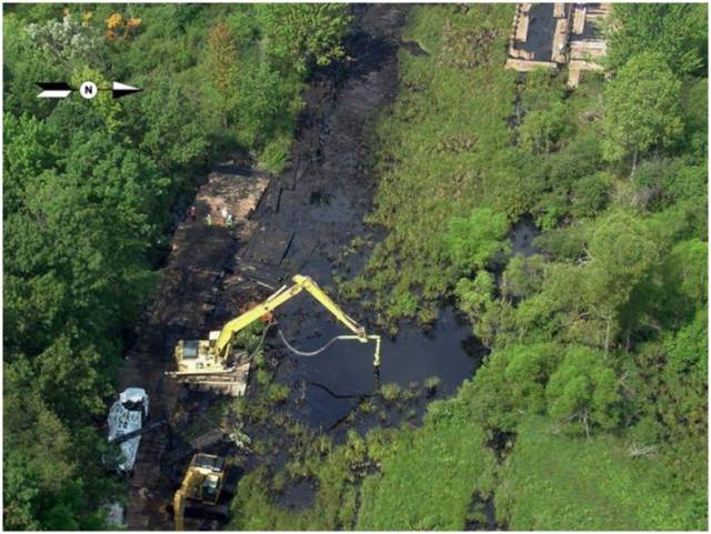 Cleanup Efforts in an Oil-Soaked Wetland near the Rupture Site